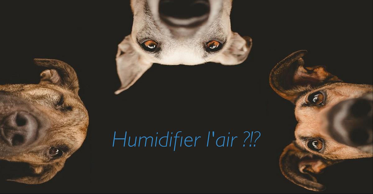 Confort thermique : zoom sur l'humidificateur d'air