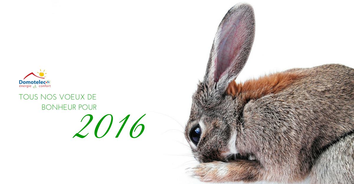 Bonne année 2016 à vous, et à tous ceux qui comptent pour vous !
